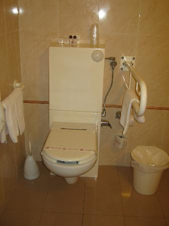 Residenza d'Aragona: Il bagno, adibito per i disabili