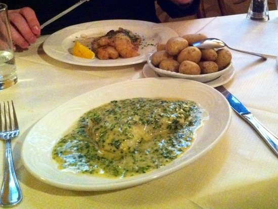 Tilleys Bistro: Cod with parsley and butter sauce - special main of the day from lunch set menu