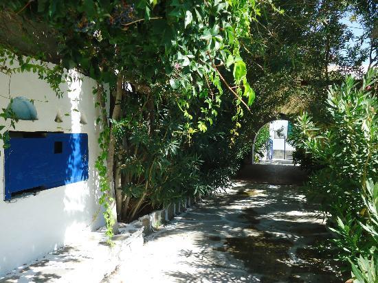 Casa di Roma: τα δωμάτια στον κήπο