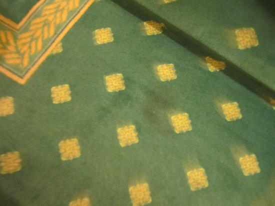 Hotel Imperiale Roma: Filthy Carpets in upstairs hallways