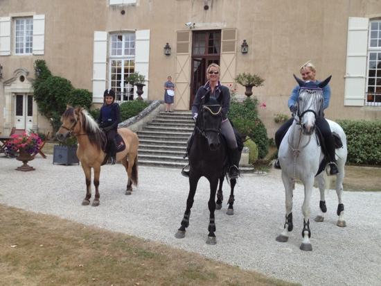 Chateau de Vault-de-Lugny : parfait pour l'accueil de nos chevaux
