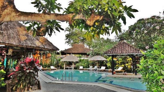 Puri Kelapa Garden Cottages: Swimmingpool