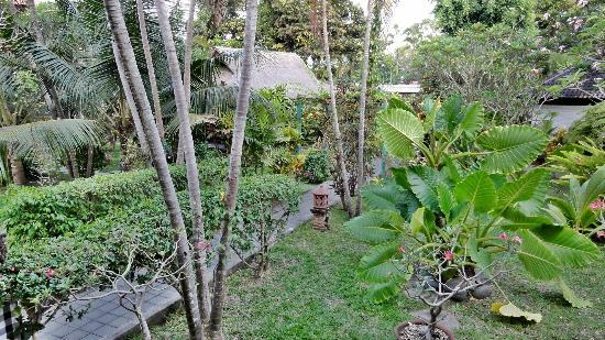 Puri Kelapa Garden Cottages: Garden