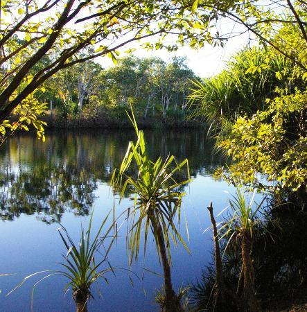 Kakadu Culture Camp : au petit matin