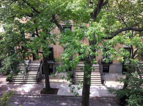 Harlem Renaissance House B&B: street