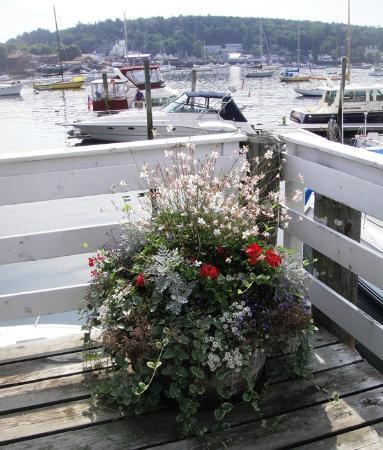 Tugboat Inn: Flowers