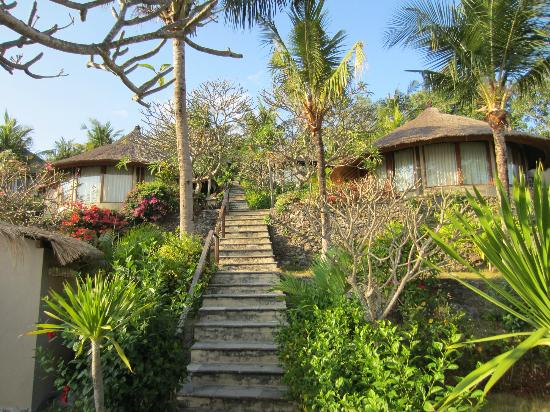 Coconuts Beach Resort: les escaliers et les bungalows