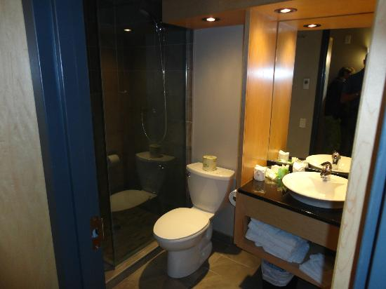 Hotel Dauphin Montreal Downtown: Bagno