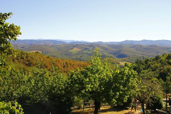 Agriturismo Piaggione di Serravalle: vue de la Capanna sur la campagne Toscane