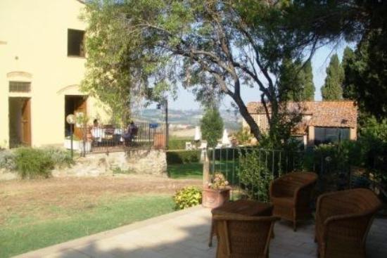 I Moricci: Terrace of Leccino