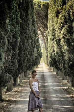 Villa di Piazzano: long walkway with trees