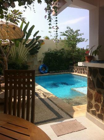 Villa Lumbalumba Lovina Bali: Leuk, klein, schoon zwembad met jetstralen.
