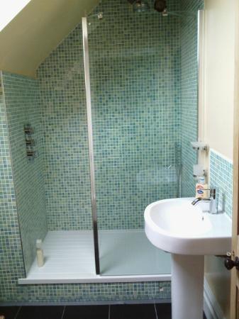Hayes Guest House: en suite walk in shower