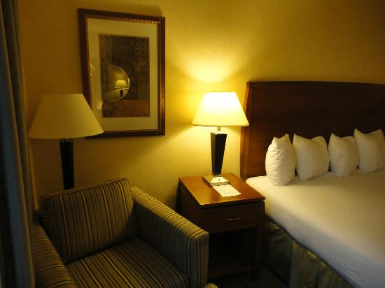 Holiday Inn Express Baltimore at the Stadiums : chambre