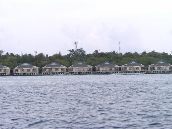 Vivanta by Taj Coral Reef Maldives: Blick auf die Wasservillas