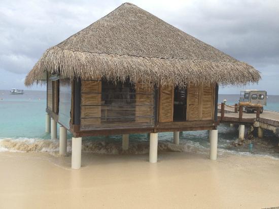 Vivanta by Taj Coral Reef Maldives: Rezeption