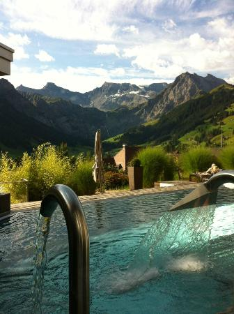 The Cambrian: outdoor pool with view towards the valley