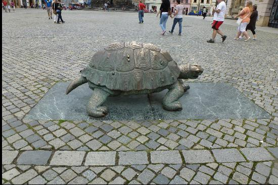 Arion Fountain: Turtle on Square