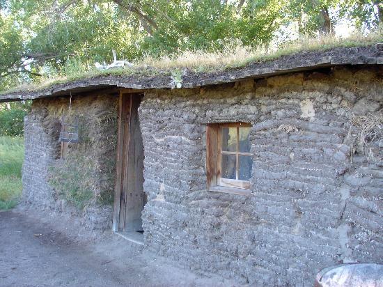 Sod House Museum: Sod roof on home