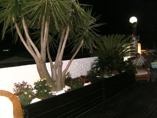 Hotel Ambassador: Roof Garden
