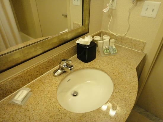 Hilton Garden Inn New York/Tribeca: Bathroom counter