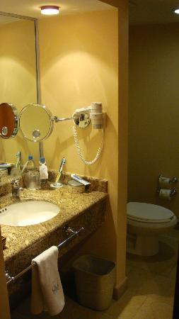 Eurostars Zona Rosa Suites : Coté lavabo
