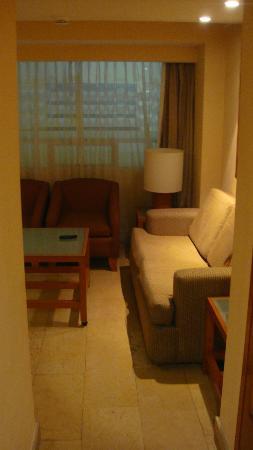 Eurostars Zona Rosa Suites : Coté salon, avec un convertible + TV y'a kitchennette aussi