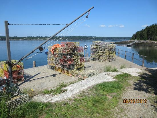 Boothbay Region Land Trust: Lobster parts at Roberts Wharf