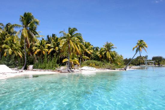Blue Heaven Island lodge : Spiaggia