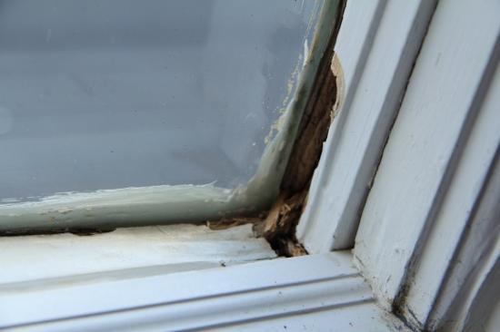 Monticello Motel: Der Fensterrahmen zum Hinterhof