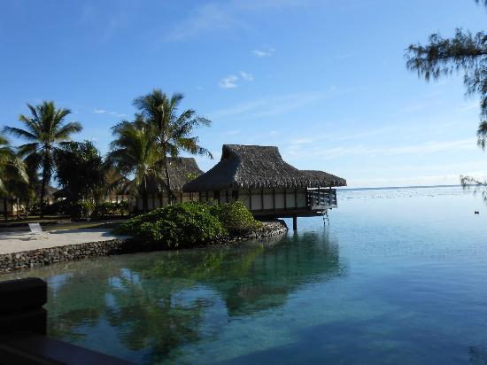 les bungalows sur pilotis picture of intercontinental moorea resort spa papetoai tripadvisor. Black Bedroom Furniture Sets. Home Design Ideas