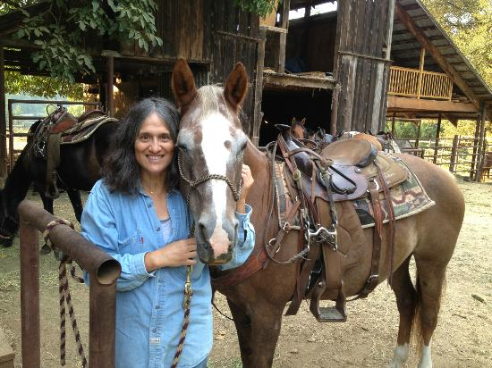 Marble Mountain Ranch - Family Guest Ranch: My trail horse Sugar