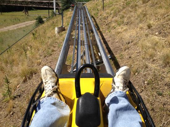 Alpine Coaster: The gentle ride up