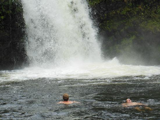 Open Eye Tours and Photos: Waterfall Road to Hana