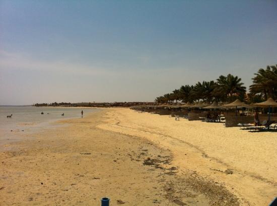 Marina Beach Resort : spiaggia