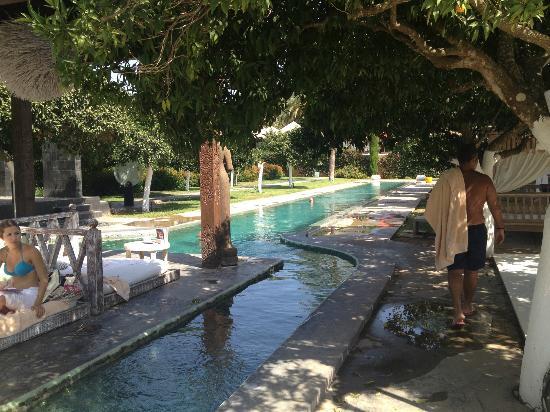 Agroturismo Atzaro: The 50 meter pool....