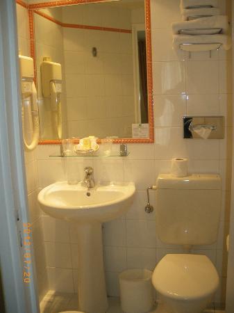 Hotel des 3 Poussins: baño