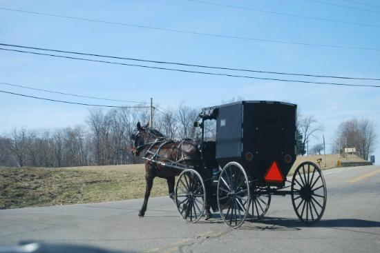 Kauffman's Country Bakery: Amish
