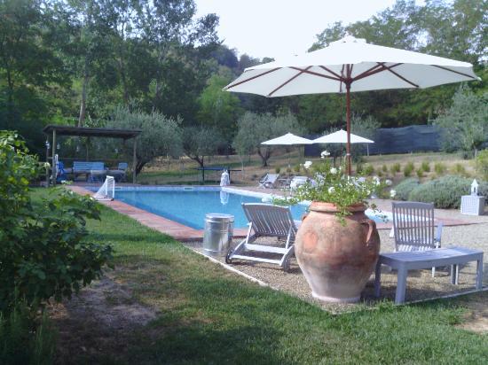 Agriturismo Il Vecchio Milipano: piscina