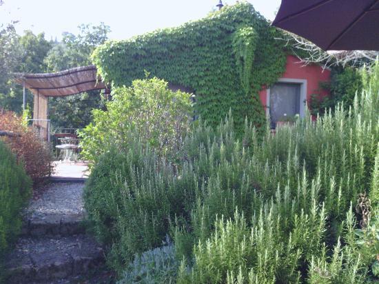Agriturismo Il Vecchio Milipano: camera
