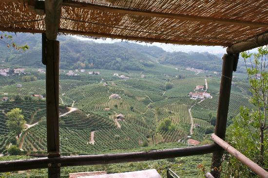 Valdobbiadene, Italia: vista dalla veranda dell'osteria