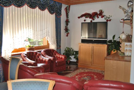 Hotel all'Usignolo : SALA TV