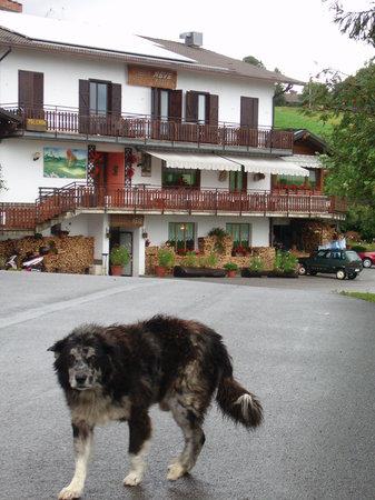 Zambla Alta, Italie : IL BUON PASTORE DELL'ALBERGO....