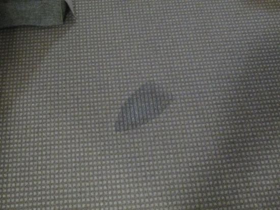 Comfort Inn and Suites Northgate Airport: Iron imprint melted in carpet