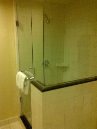 Caesars Windsor: shower