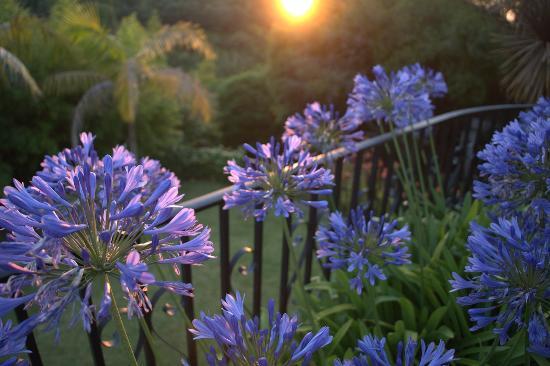 Casa do Valle: Beautiful sunsets