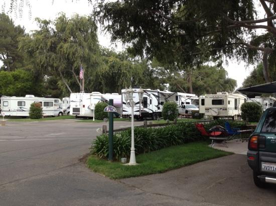Buellton, CA: flying flags campground.
