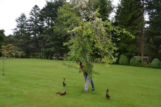 Tigh Na Bruach: Gardens