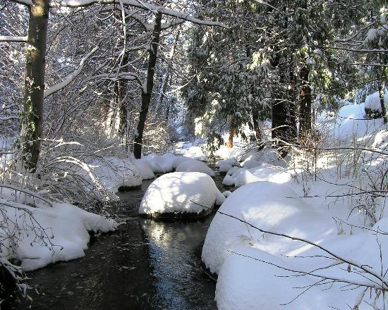 Quiet Creek Inn : Strawberry Creek in Winter