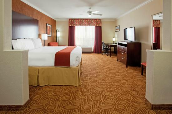 Holiday Inn Express Hotel & Suites Katy: king room